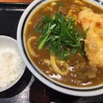 手作りうどん 天粉盛 - 鶏天カレーうどん (*´ω`*) 麺L ライス小