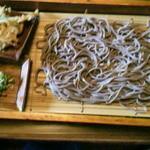 そば家 白河 - ざる大盛(天ぷらはタマネギの天ぷらでした)(1800円)
