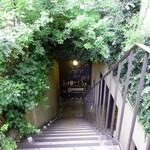 ラシーヌ - 店舗がある地下への階段は緑に覆われてます