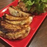 中野餃子 「やまよし」 - 手前鯖キーマカレー餃子、奥ラムパクチー餃子