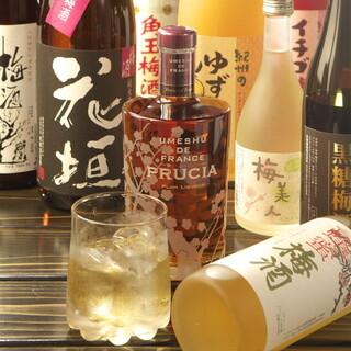 鶏に合う!女子も喜ぶ♪種類豊富な梅酒・日本酒をご用意◎