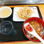 たも屋 - カレー ミニサイズ 釜揚げ麺