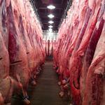 萬の屋 - 毎日100頭以上の牛から~1頭だけ選び抜いて、お店で使用します。肉質・脂質・霜降りだけでなく、父系の血統や餌の配合内容~生産者の性格まで吟味して「プロの肉屋が自分で食べたい肉!」をご提供します。