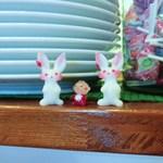 ル ヴェール フレ - ウサちゃんに見つめられながら頂くウサギは格別!笑