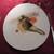 ザ・カステリアンルーム - 料理写真:北海道産真鱈のポアレ