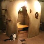 Cat Cafe てまりのおうち -