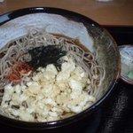 蕎麦人 - 冷やしタヌキ 大盛 2009.4