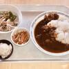 キャリオカ - 料理写真:松阪牛すじ入りカレー