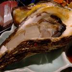 なまはげ - 岩牡蠣