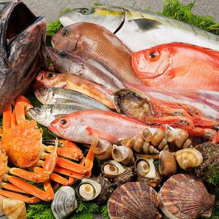 水産卸会社直営の店。能登の魚を中心に鮮度にこだわるお魚料理!