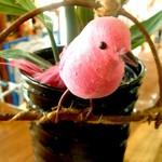 イルベッカフィーコ - かわいい小鳥がお出迎え