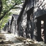 酒田夢の倶楽 - 『山居倉庫』けやき並木