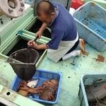 大阪産(もん)料理 空 - 漁師さんから仕入れた魚は、活きたまま店内の水槽へ。