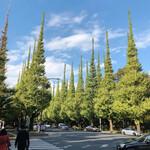 RISTORANTE&BAR EVOLTA - いちょう並木はまだ緑