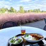 キッチンHana - 料理写真:イネ科のミューレンべルギア カピラリスがピンクで美しい