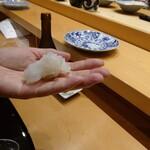 139368414 - 小松弥助の代名詞と言えるネタが「イカ」薄いイカの身を見事な包丁裁きで3枚におろし、これを糸状に刻み口の中でほどけるように仕上げる