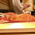 Tokami - 2020.10.  特大の牡丹海老