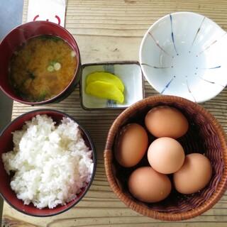コケコッコー共和国 - 料理写真:たまごかけごはん390円