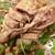 福萬年 - 料理写真:鹵味鴨です 待ってました これを食べて飲もうと思ってたんです