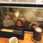 伊豆の味処 錦 -