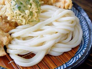 本格手打 麺の蔵 - ざるうどん