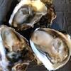 萬房 - 料理写真:季節毎の最上の牡蠣