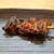かぶと - 料理写真:えり焼き