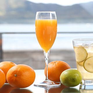 柑橘のフレッシュジュースや瀬戸内レモンを使ったドリンクも美味