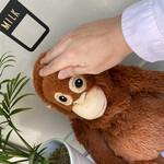 バナナジュース専門店 877 - その他写真:こんにちは(ง ´͈౪`͈)ว