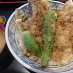 天藤 - 穴子天丼