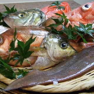 旬菜・旬魚にこだわっています。