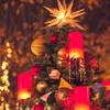 Torattoriabikororeyokohama - 料理写真:クリスマスディナー