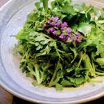 パクチークレソン春菊のサラダ