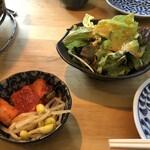 炭火焼肉ホルモン 横綱三四郎 - セットのナムル、サラダなど