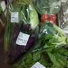 すかなごっそ - 料理写真:買った野菜たち