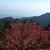 比叡山峰道レストラン - その他写真:窓からの景色