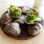 ランファン・キ・レーヴ - ホッキの貝殻を使った盛り付けで、北海道感が高まる! これは写真に撮りたくなる