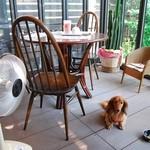 Cafe OKINA - テラス席はペット可です