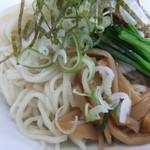 14109078 - 2012.07冷しランチ(尾道麺)の麺のアップ!