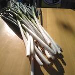 とりゆう - 料理写真:地元農家直送の鮮度抜群の長ネギです!