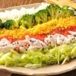 結庵 - 緑黄色野菜とささ身の彩りサラダ