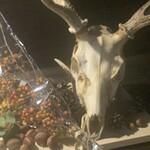 大人の隠れ家 七輪炭火レストランバーAVANTI - ジビエ 熊 鹿 猪 兎など