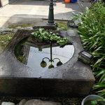 前蔵 - お庭