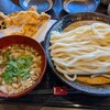 うどん家 一 - 料理写真:肉煮干し  冷たいうどん   大盛り   ¥900 サクサクかしわ天    ¥350