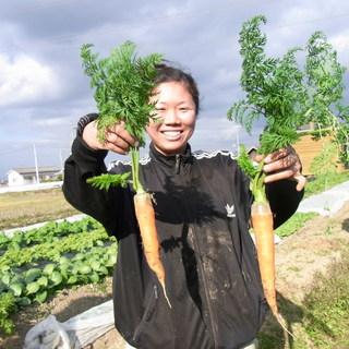 神戸西区岩岡 ユリ農園 直送! 農薬・化学肥料不使用の有機野菜