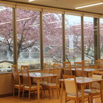 野菜レストラン ショウナン - 河津桜を眺めなら食事が出来ます。(2月下旬くらい)