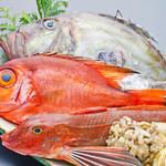 九頭龍蕎麦 - 毎日入荷する越前沖直送の地魚