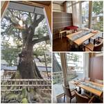 クリマ ディ トスカーナ - 新しく個室スペースを作られました!       窓からは大きな楠木が目の前にドーンと聳え立ち、とても素敵な空間でしたよ♪       有り難くも個室使用第一号となりました♬