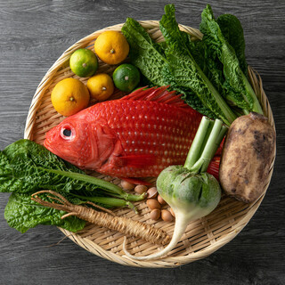 市場にあまり出回らない珍しい魚介類との出会いをお楽しみ下さい
