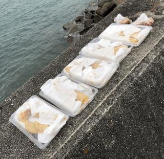 おはぎの店こだま - タコ天ぷら10 本         鶏唐揚げ2個